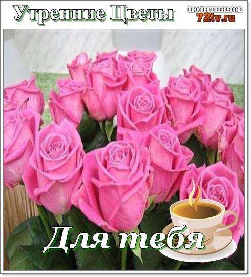 Утро цветы!